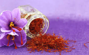 Everything about saffron